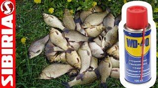 манка для рыбалки купить